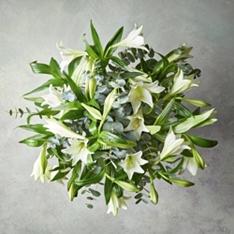Easter waitrose florist longiflorum lilies bouquet negle Gallery