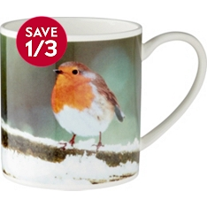 Waitrose bone china robin photographic mug