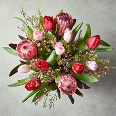 Valentine's Red Roses & Protea Gift Bag