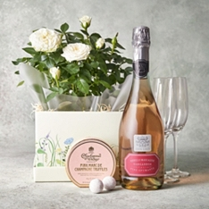 Celebration Rose Gift Set