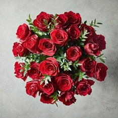 Dozen Ultimate Red Roses Bouquet Gift Set