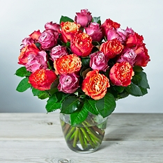 Foundation Double Dozen Roses Bouquet
