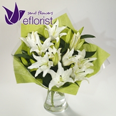 Same Day White Lily Bouquet