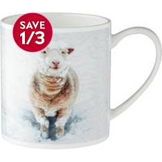 Waitrose bone china photographic sheep mug
