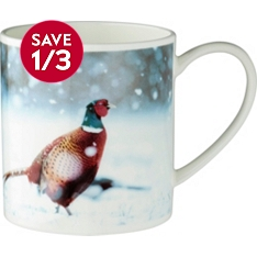 Waitrose bone china photographic pheasant mug
