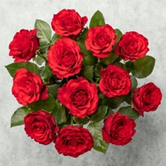 Dozen Upper Class Red Roses Bouquet