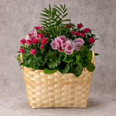 Mother's Day Extra Large Pink Flowering Basket