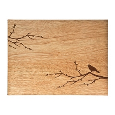 Denby birdy etched placemats, set of 2