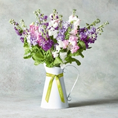 Scented Sweet Peas & Stocks Jug