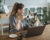 Bilde av ung smilende kvinne sitter foran PC-en med en hund som ser oppmerksomt på henne.
