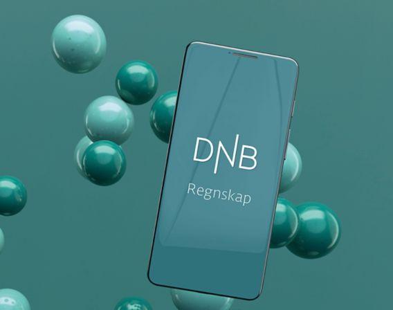 DNB Regnskap med Luca Labs på mobil