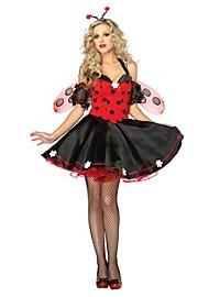 Lady Bug Kostüm