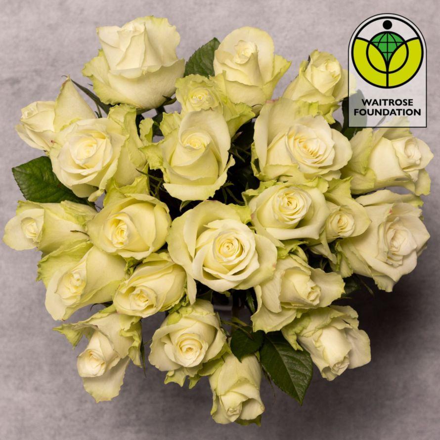 Foundation White Roses Bouquet | Waitrose Florist