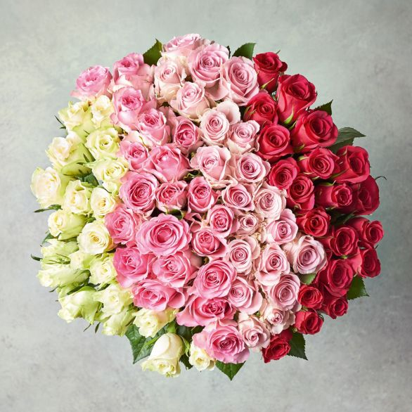 Foundation Ombre Roses Bouquet Pink