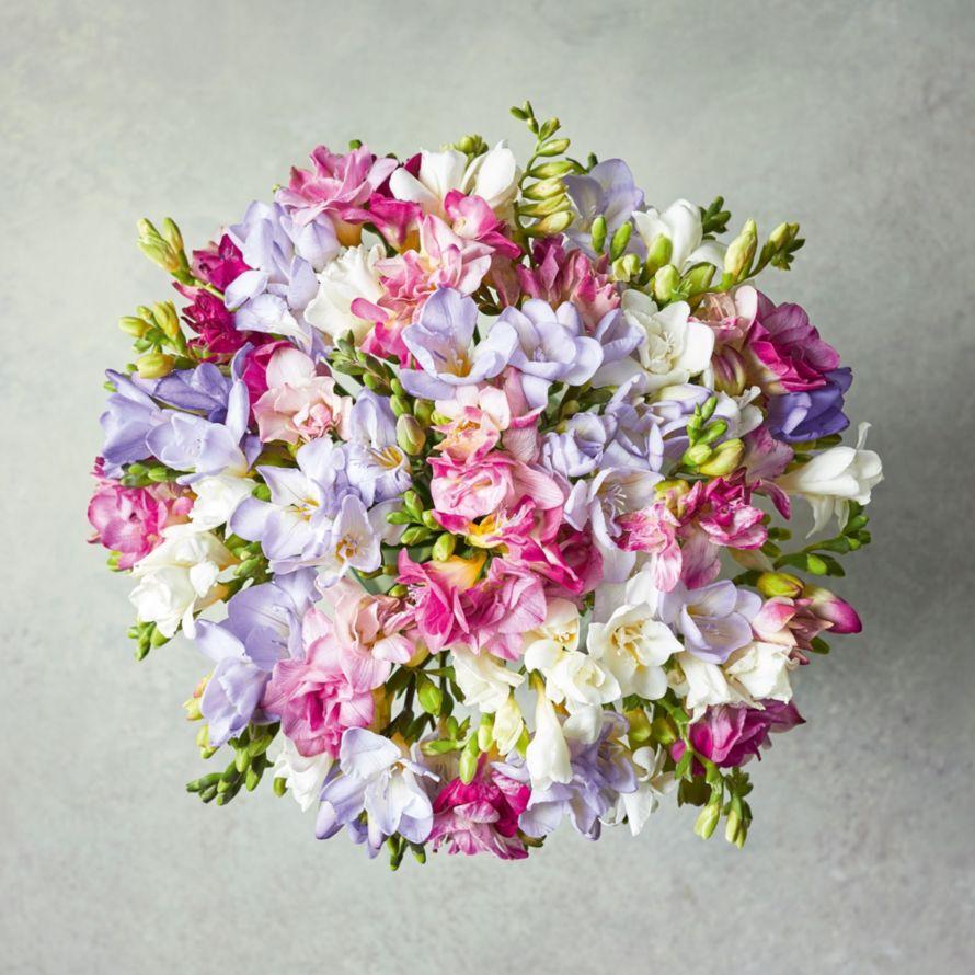 Mixed freesias waitrose florist izmirmasajfo