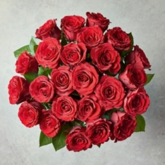 Valentine's Day Double Dozen Upper Class Red Roses