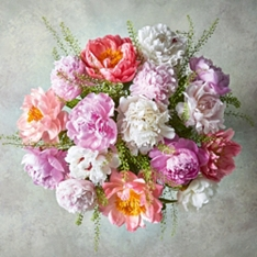 Abundance of Peonies Bouquet