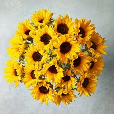 Foundation Sunflowers Bouquet