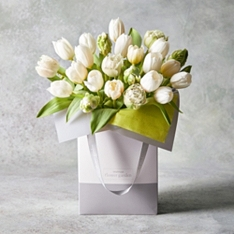 Tulip Collection Gift Bag