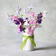 Fragrant British Sweet Peas Jam Jar