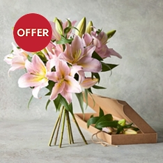 Pink Lilies - flowers by post