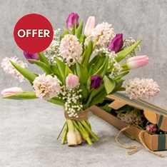 Mother's Day Scented Hyacinth Letterbox