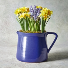 Spring Outdoor Jug
