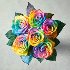 Valentine's Day Rainbow Roses Bouquet
