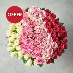 Foundation Ombre Roses Bouquet