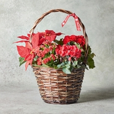 Red Christmas Willow Basket